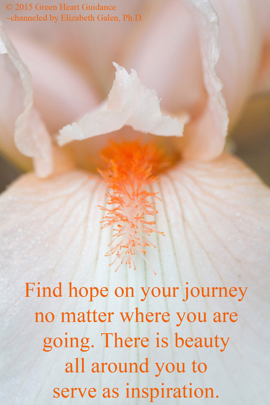 Find hope on your journey no matter where you are going. There is beauty all around you to serve as inspiration. ~channeled by Elizabeth Galen, Ph.D.