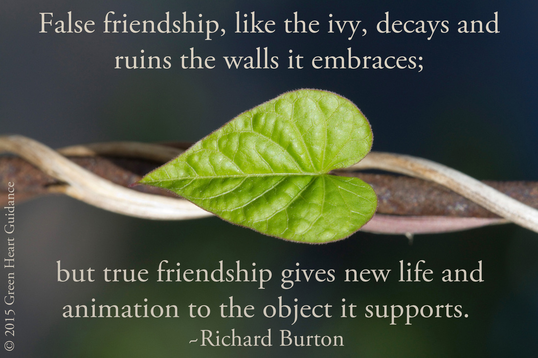 False friendship, like the ivy, decays and ruins the walls it embraces; but true friendship gives new life and animation to the object it supports. ~Richard Burton