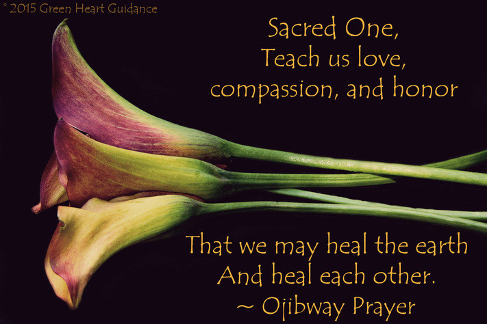 Sacred One, Teach us love, compassion, and honor That we may heal the earth And heal each other. ~Ojibway Prayer