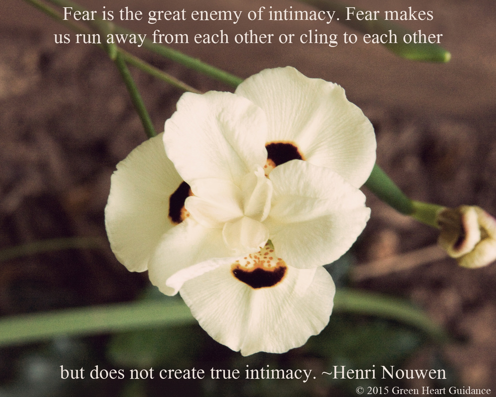 Fear is the great enemy of intimacy. Fear makes us run away from each other or cling to each other but does not create true intimacy. ~Henri Nouwen
