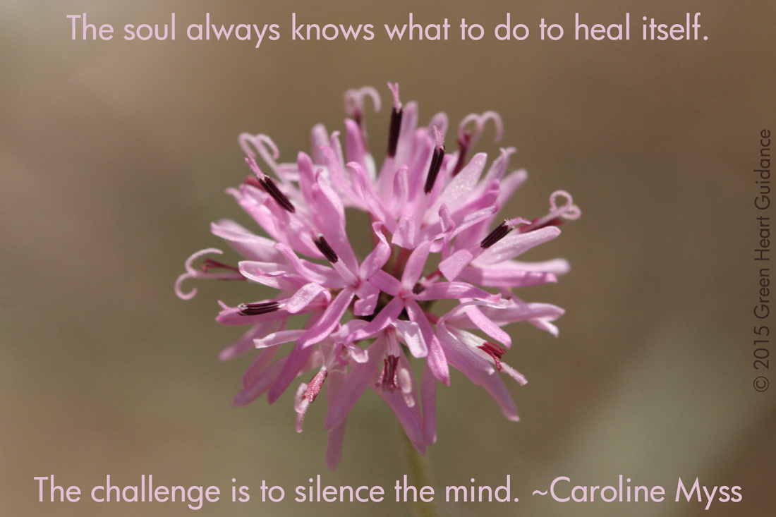 The soul always knows what to do to heal itself. The challenge is to silence the mind. ~Caroline Myss