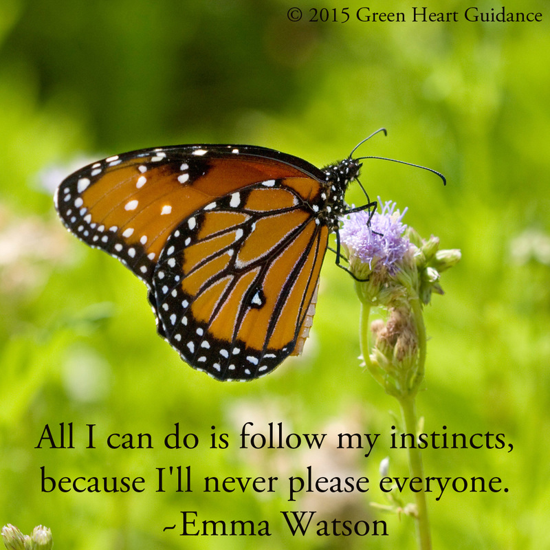 All I can do is follow my instincts because I'll never please everyone. ~Emma Watson