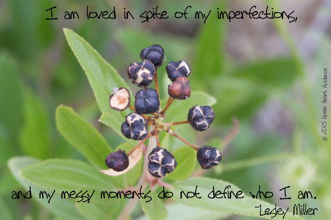 I am loved in spite of my imperfections, and my messy moments do not define who I am. ~Lesley Miller