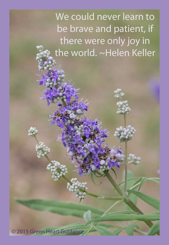 We could never learn to be brave and patient, if there were only joy in the world. ~Helen Keller