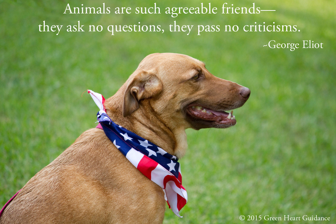 Animals are such agreeable friends--they ask no questions, they pass no criticisms. ~George Eliot