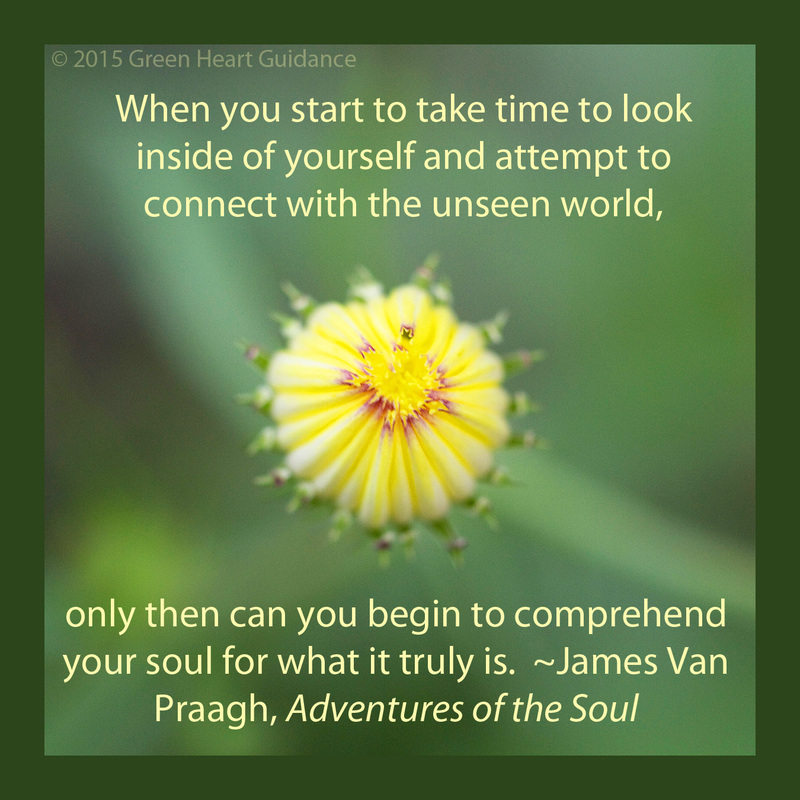 When you start to take time to look inside of yourself and attempt to connect with the unseen world, only then can you begin to comprehend your soul for what it truly is. ~James Van Praagh, Adventures of the Soul