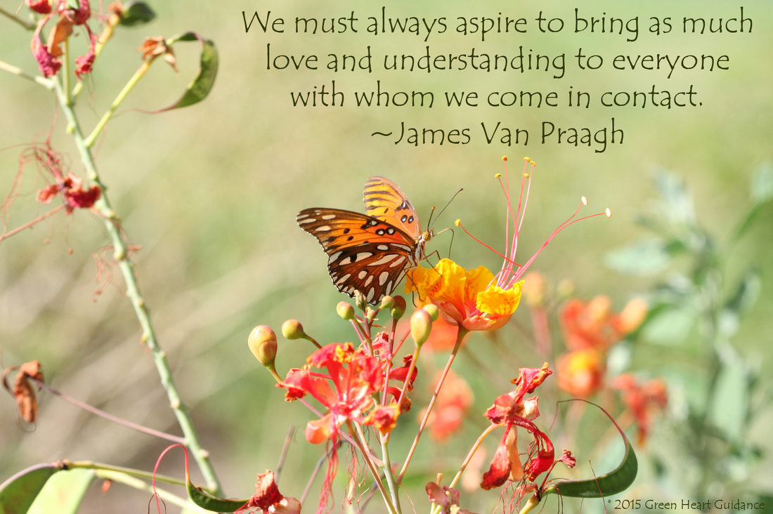 We must always aspire to bring as much love and understanding to everyone with whom we come in contact. ~James Van Praagh