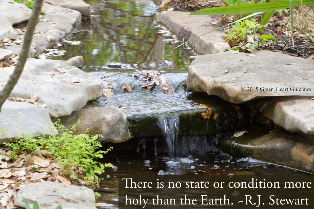 There is no state or condition more holy than the Earth. ~R.J. Stewart