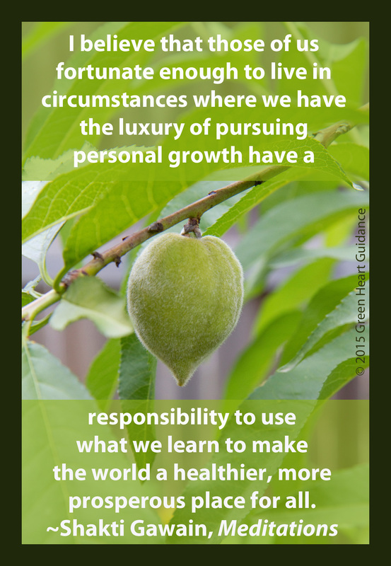 I believe that those of us fortunate enough to live in circumstances where we have the luxury of pursuing personal growth have a responsibility to use what we learn to make the world a healthier, more prosperous place for all. ~Shakti Gawain, Meditations