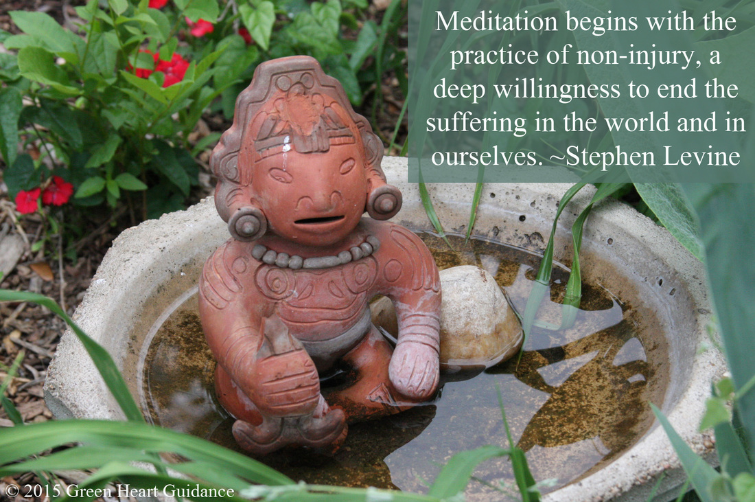 Meditation begins with the practice of non-injury, a deep willingness to end the suffering in the world and in ourselves. ~ Stephen Levine, Guided Meditations, Explorations, and Healings