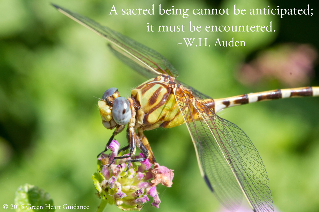 A sacred being cannot be anticipated; it must be encountered. ~W.H. Auden
