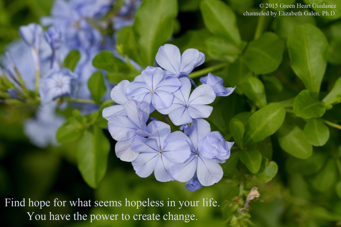 Find hope for what seems hopeless in your life. You have the power to create change. ~channeled by Elizabeth Galen, Ph.D.