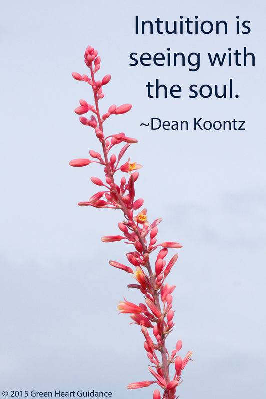 Intuition is seeing with the soul. ~ Dean Koontz